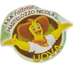 Fattoria N. Martelozzo